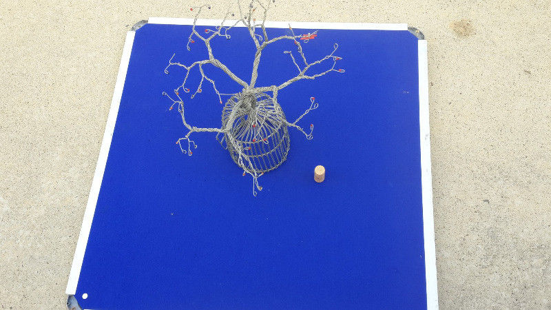 Boabab wire tree