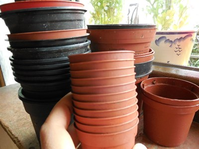 Verskillende grootte plant potte