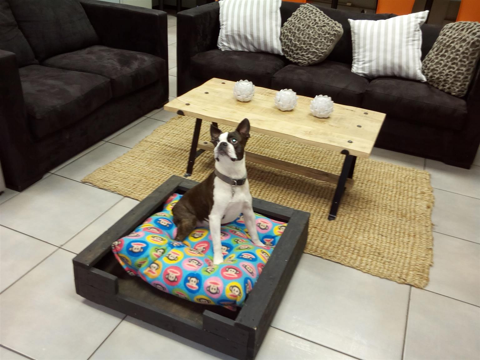 Doggie Beds For Sale: