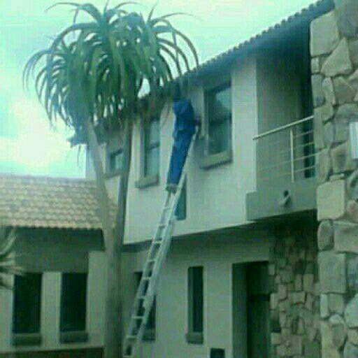 Paint your house now