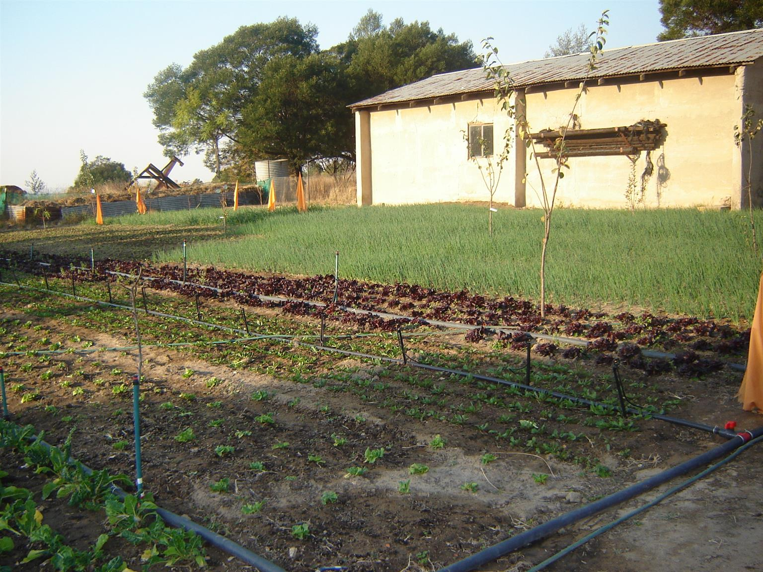 21.4 Hectare Farm for Sale