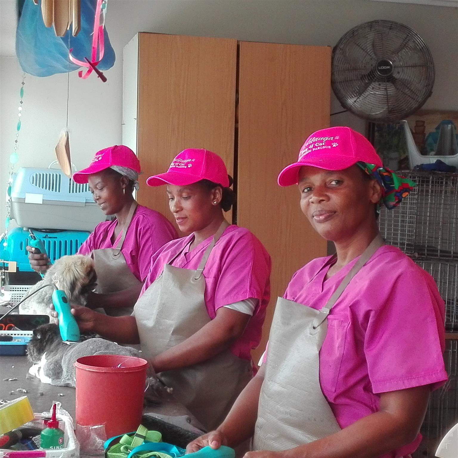 Umhlanga Dog & Cat Grooming Parlour