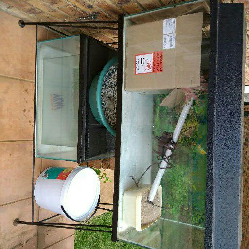 3 x fish tanks 3ft/2ft/1.5ft