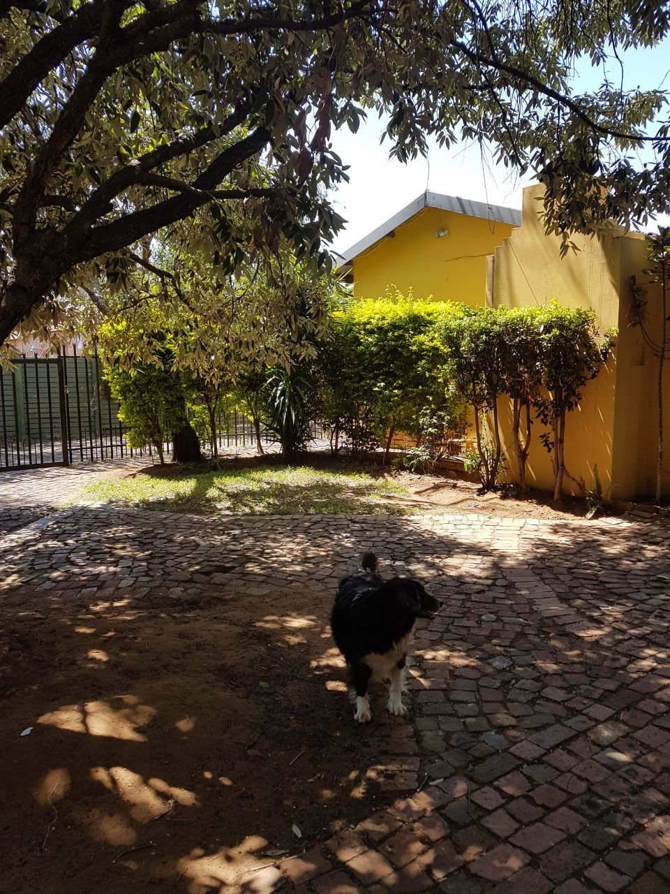 3 Bedroom house with bachelor flat for sale in Silverton