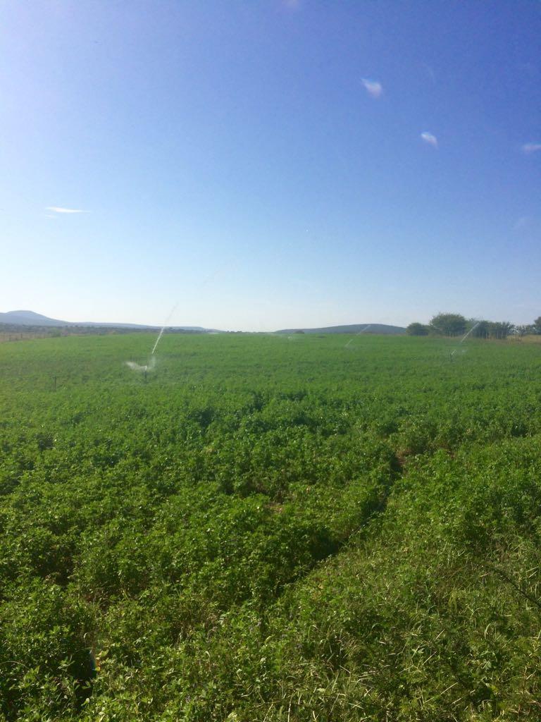 Dunbar Sand Mine and Irrigation Farm
