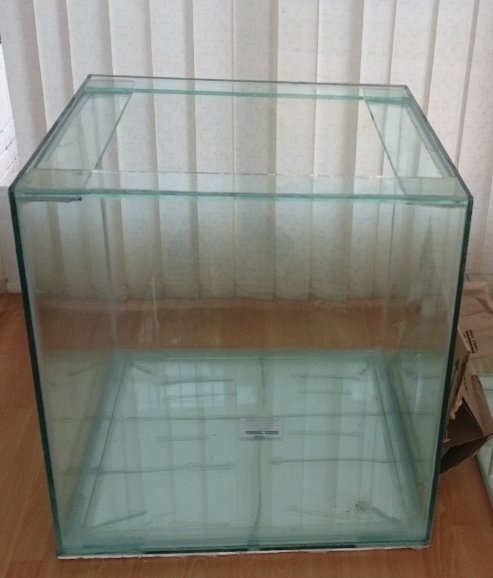Marine or Fresh water fish tank for sale!