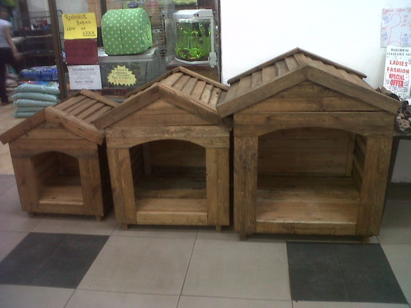 Mo's kennels