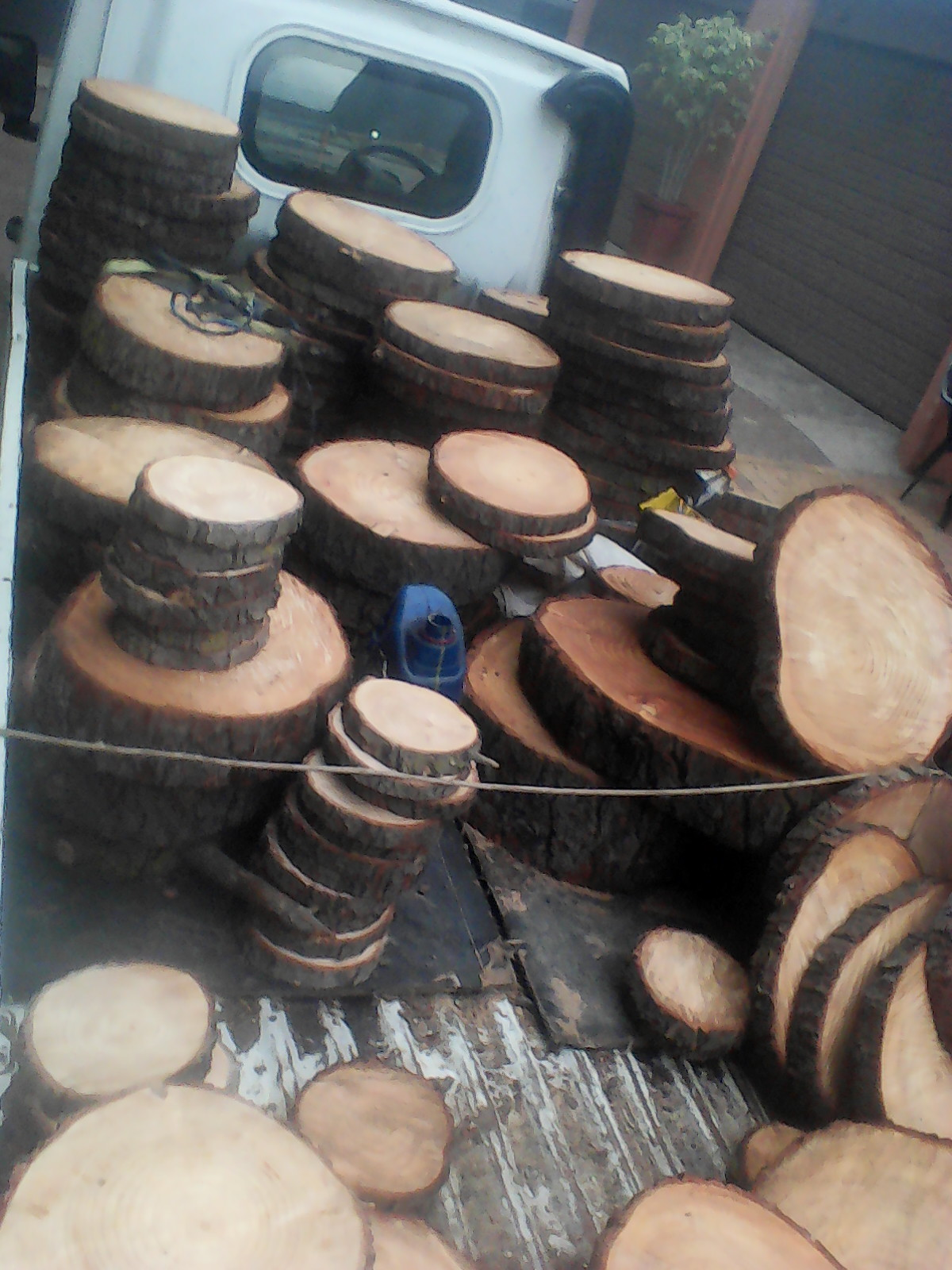 wood slices/discs for sale