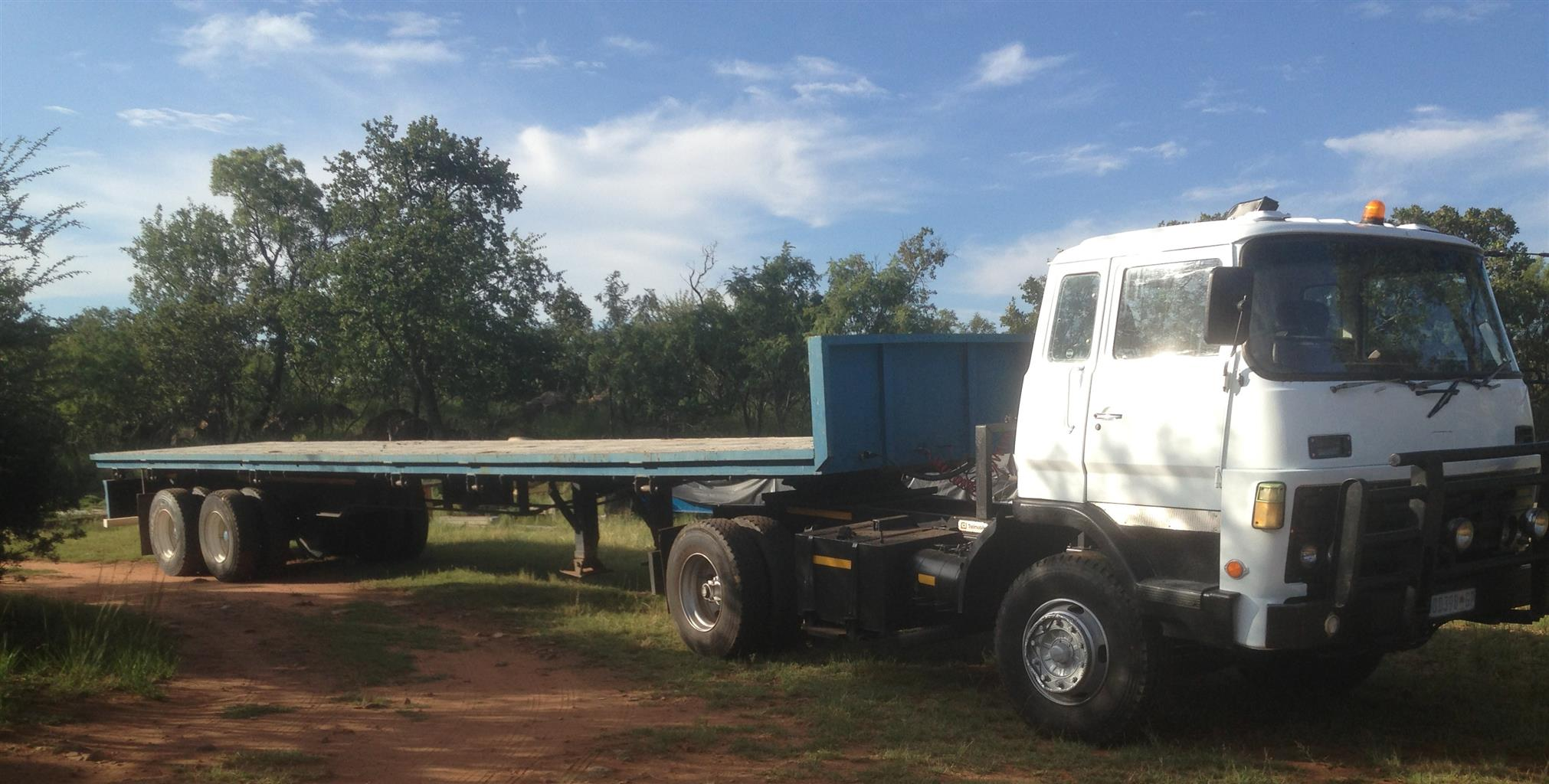 HORSE AND TRAILER FOR SALE