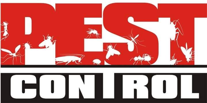 Afordable Pest control