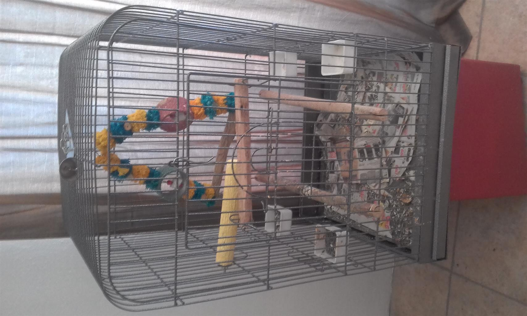 Fully equipped parrot cage for sale