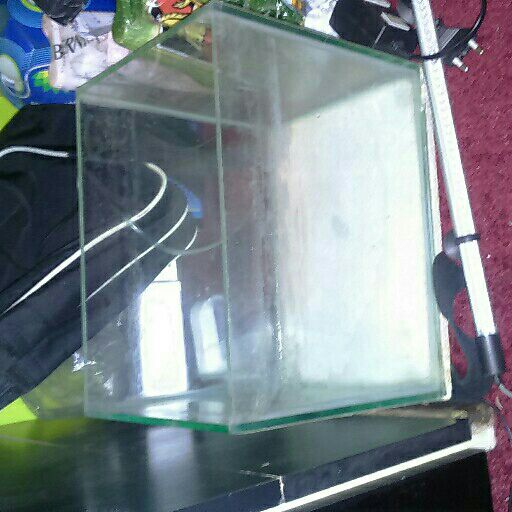 Small fish tank for sale junk mail for Small fish tanks for sale