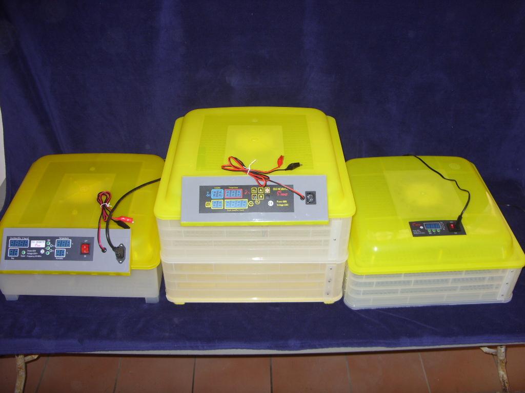 Automatic Incubators Digital 1 Year guarantee
