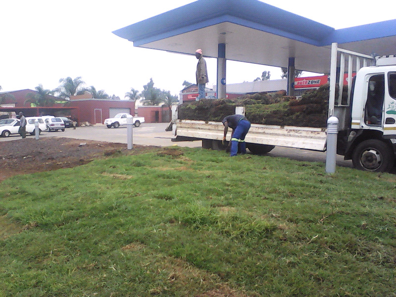 Eco Turf Instant lawn sales and deliver Kikuyu grass, LM grass, shade over & evergreen