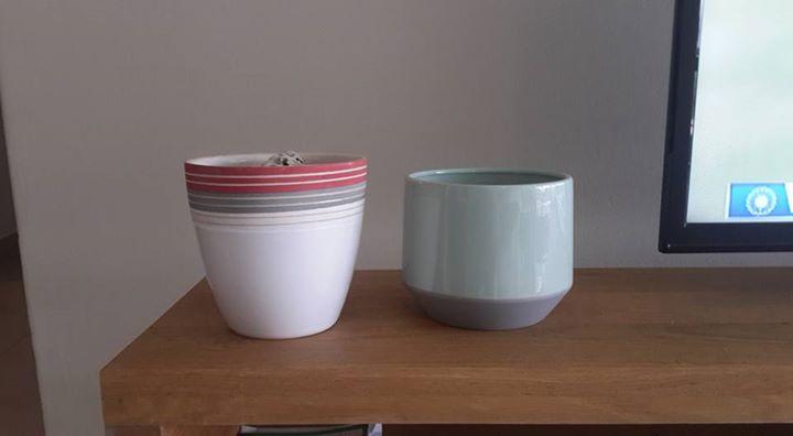 2x small pots