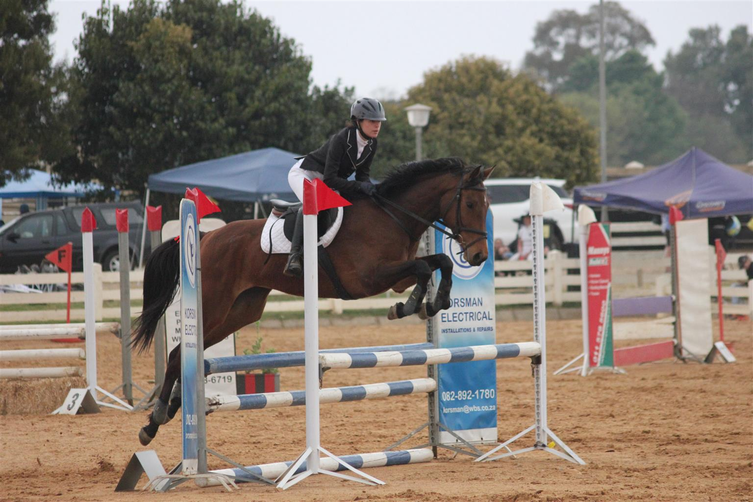 Lovely Show Jumping Mare