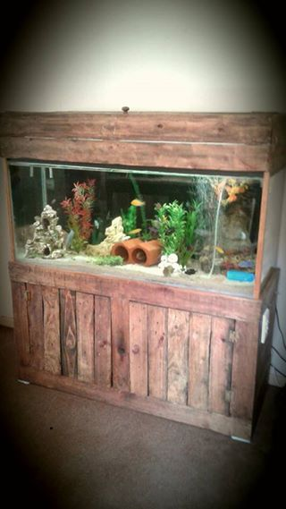 Fish Tank with closet