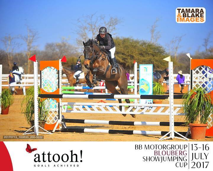 Competitive Show Jumper