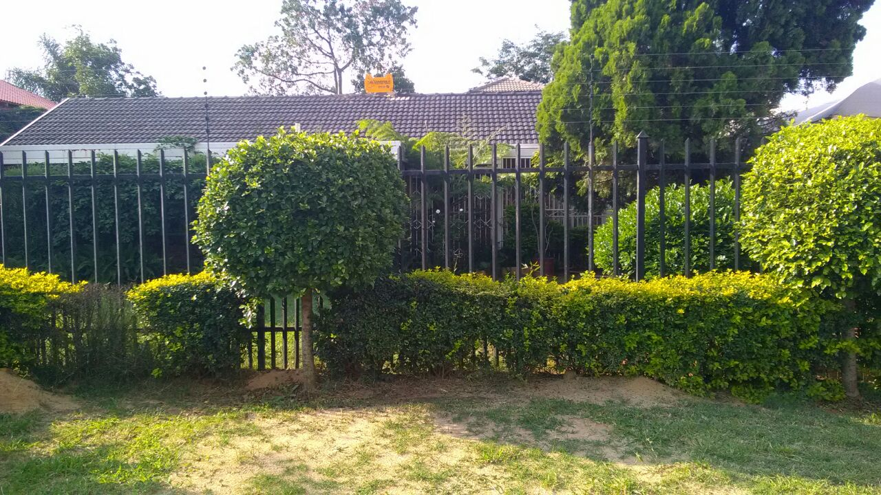 Delightfull 3 bedroom house for rent in the Orchards