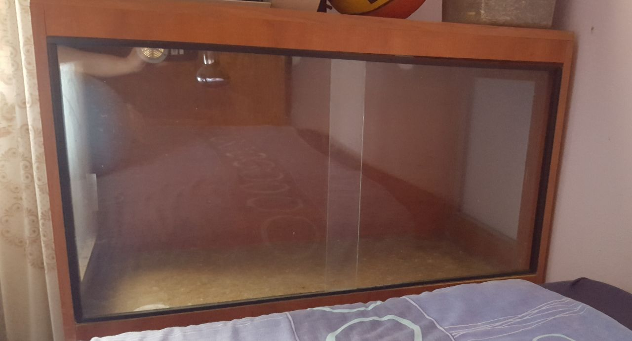 Bearded dragon cage for sale.