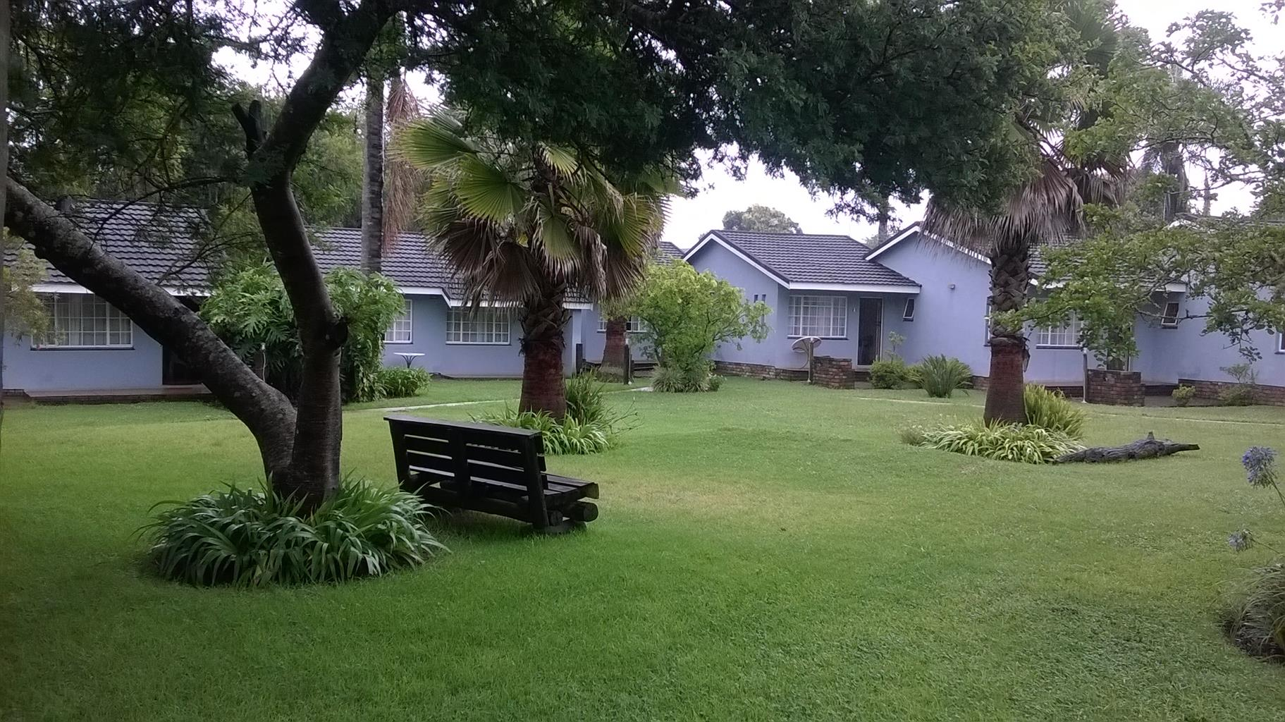 Profitable lodge for sale in Graskop