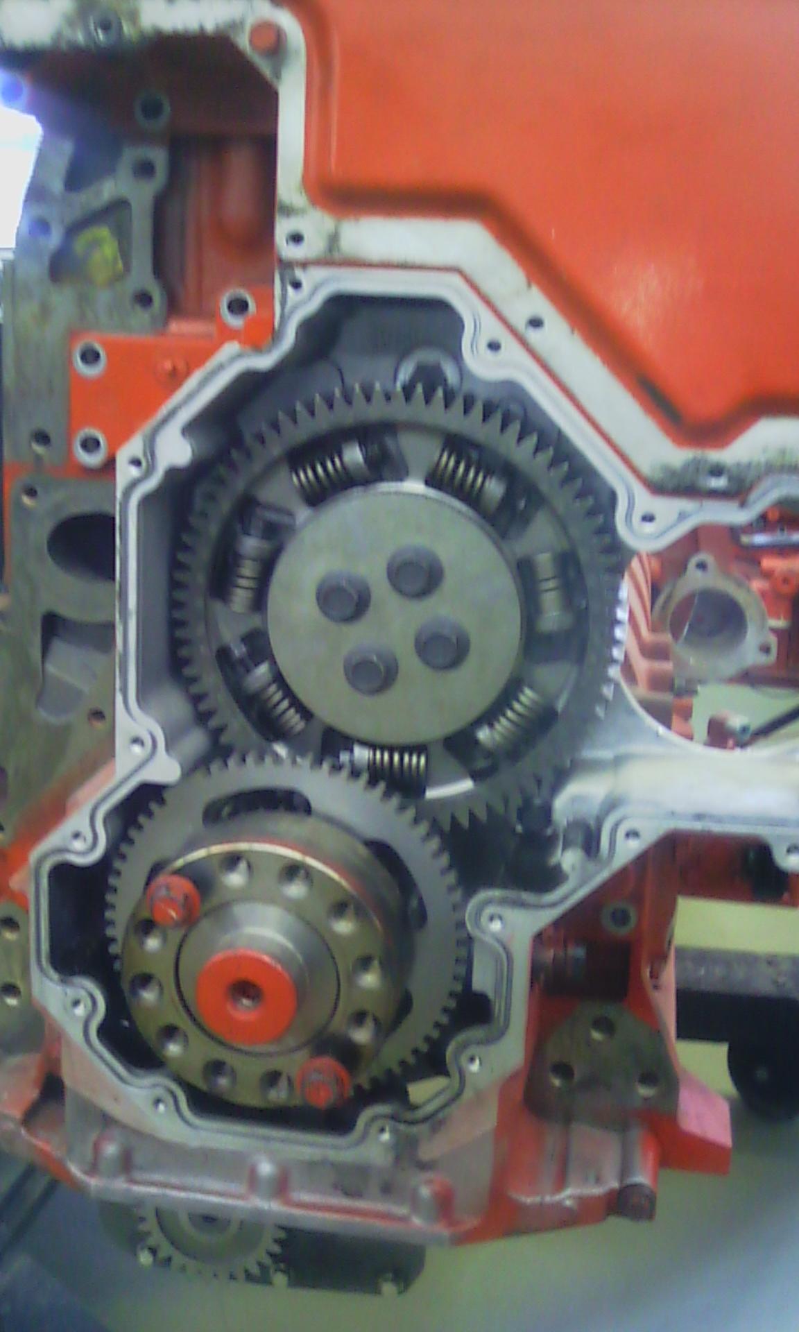 Diesel mechanic /Earthmoving diesel mechanic looking for job