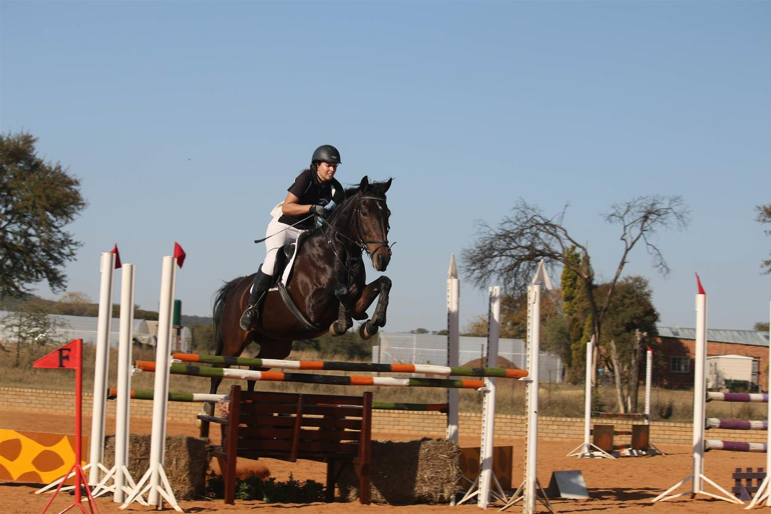 Open Show Jumping Training Show *R5000 sponsored prizes*