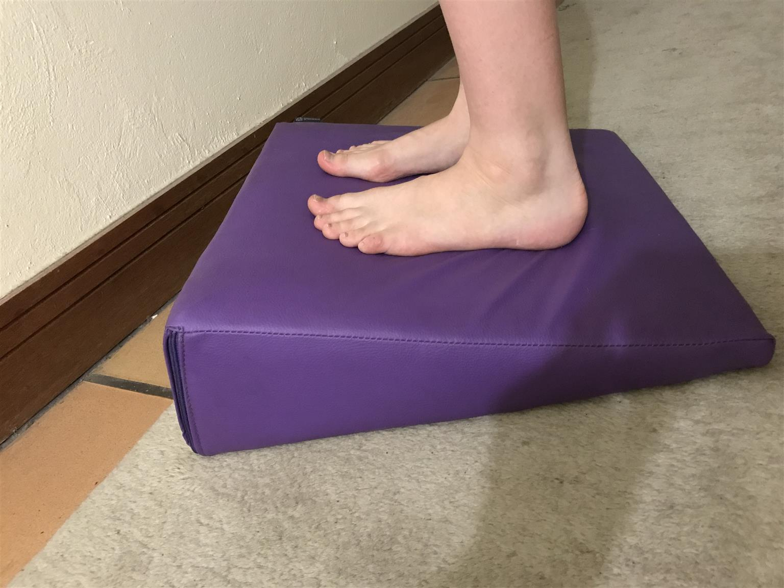 Physiotherapy wedge brand new