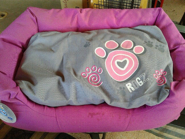 small dog bed for sale