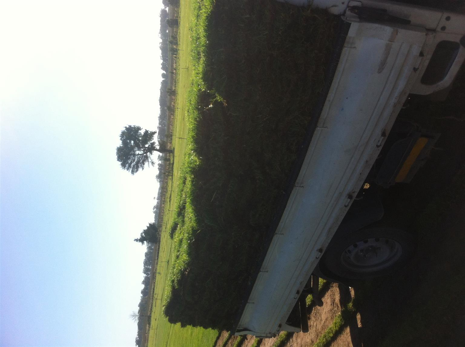 Suppliers of roll on lawn