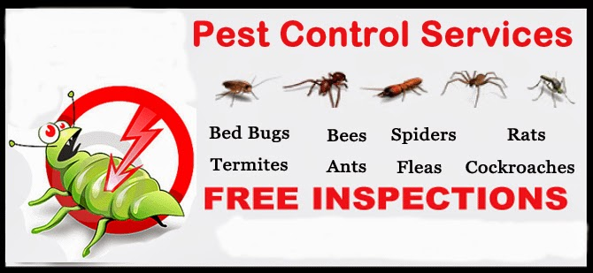 Fumigations, terminations, removals, and controlling of pests!