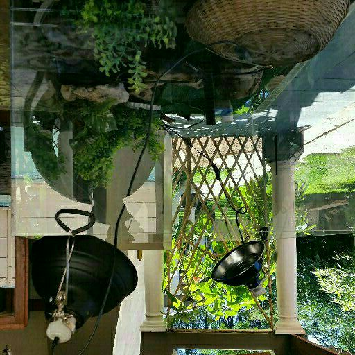 Glass Reptile Inclosing and all accesories