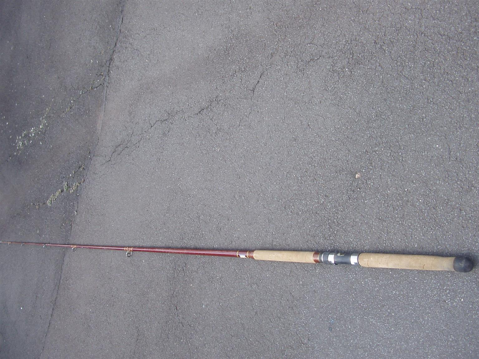 Cane Fishing Rod - In good condition