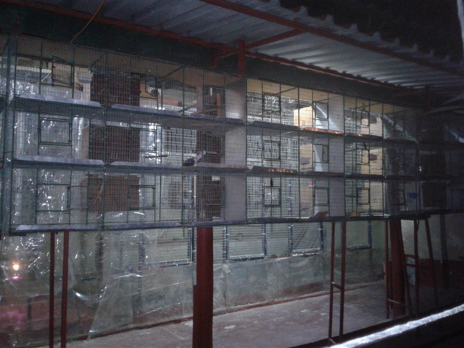 flight/breeding cages