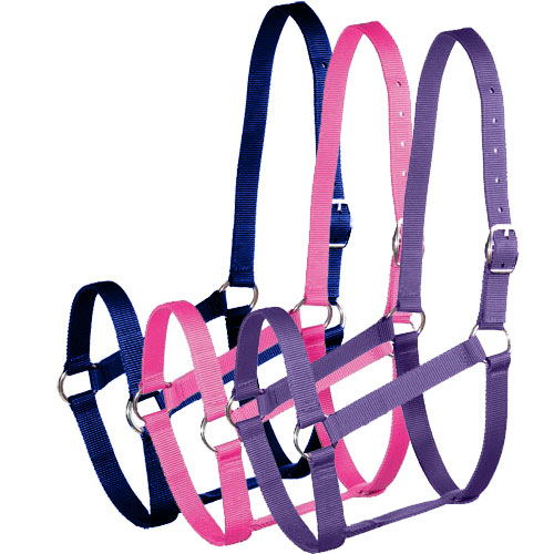 Horse Halter and Lead Set
