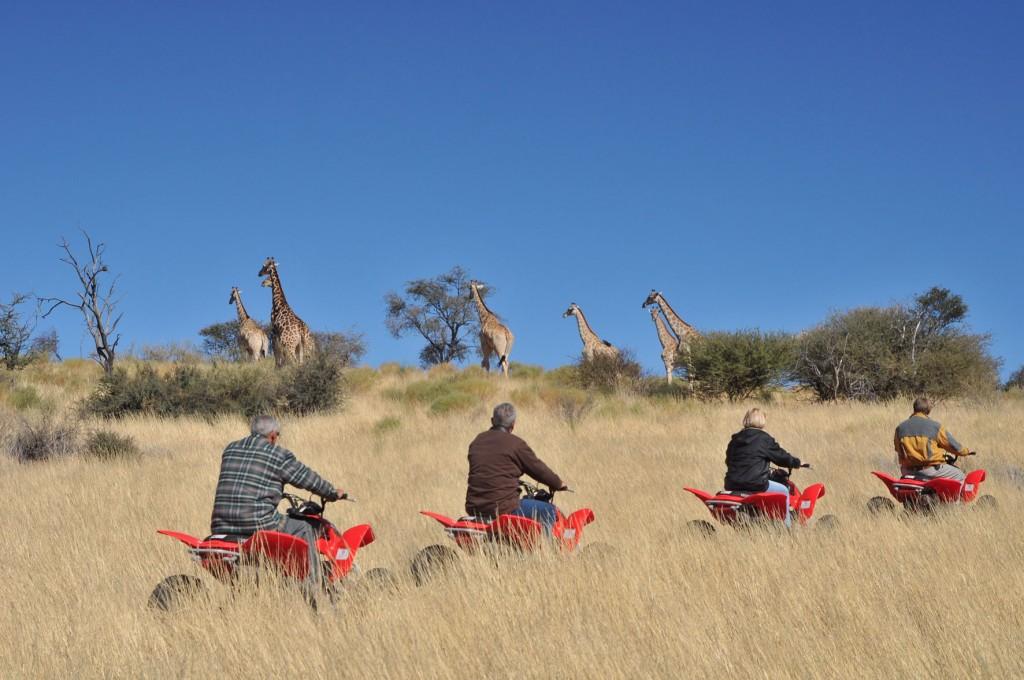 Quad safari & Quad Trail