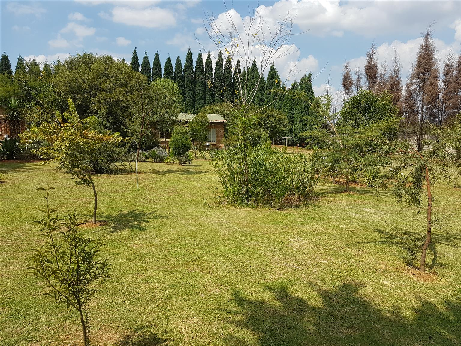 Two bedroom and big garden Bachalors for rent