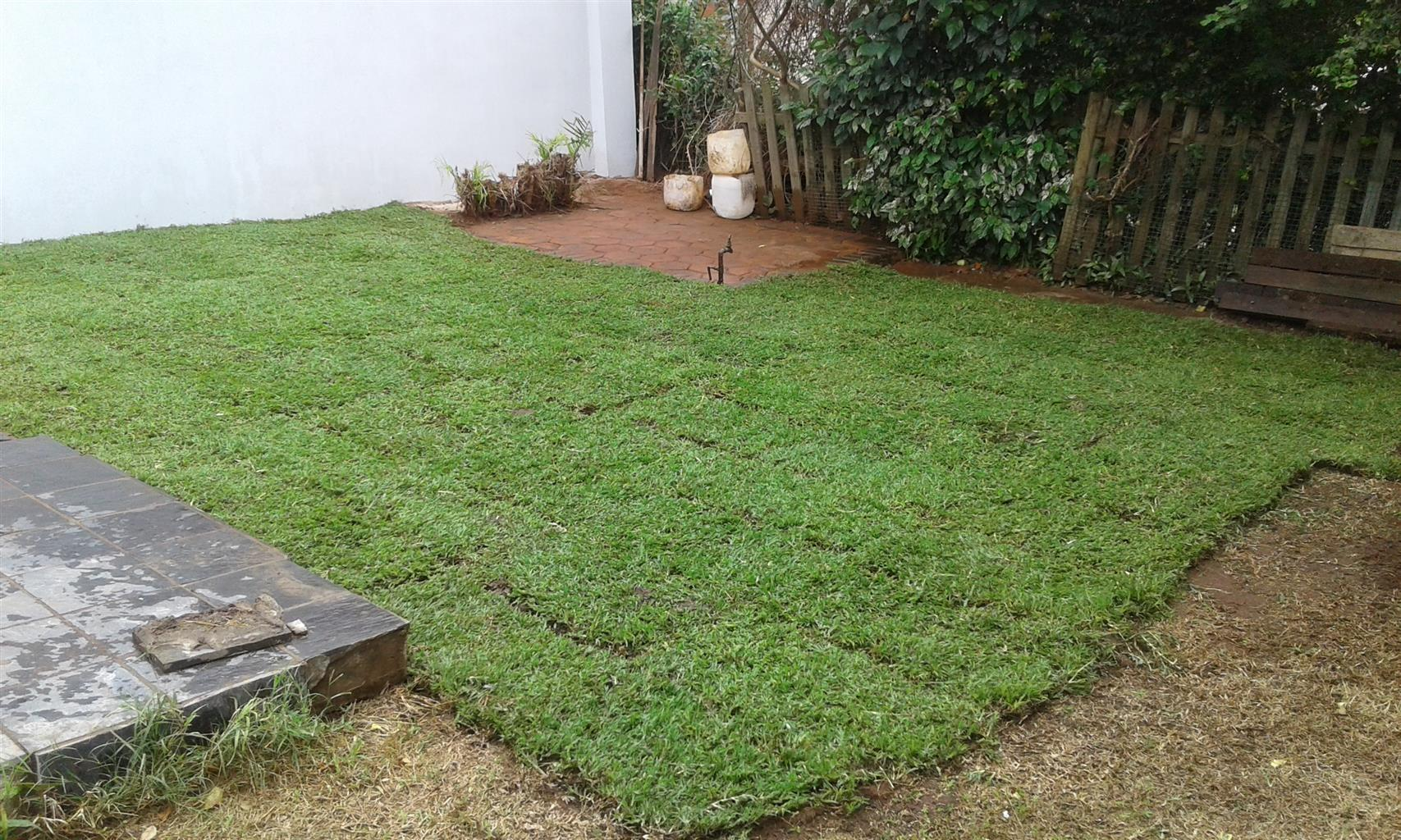 GRASS En ALL WE GRASS K.Z.N INSTANT TURF CONT 0722129857 /0333901166