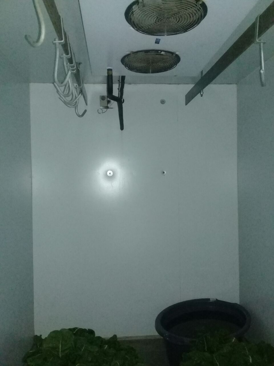 Coldroom - Portable 2m x 3m
