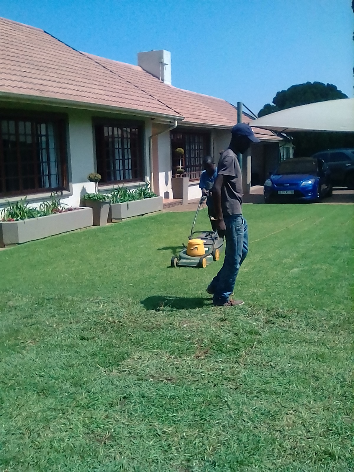 Top Quality Instant Lawn & Tree Felling Services:0812690961