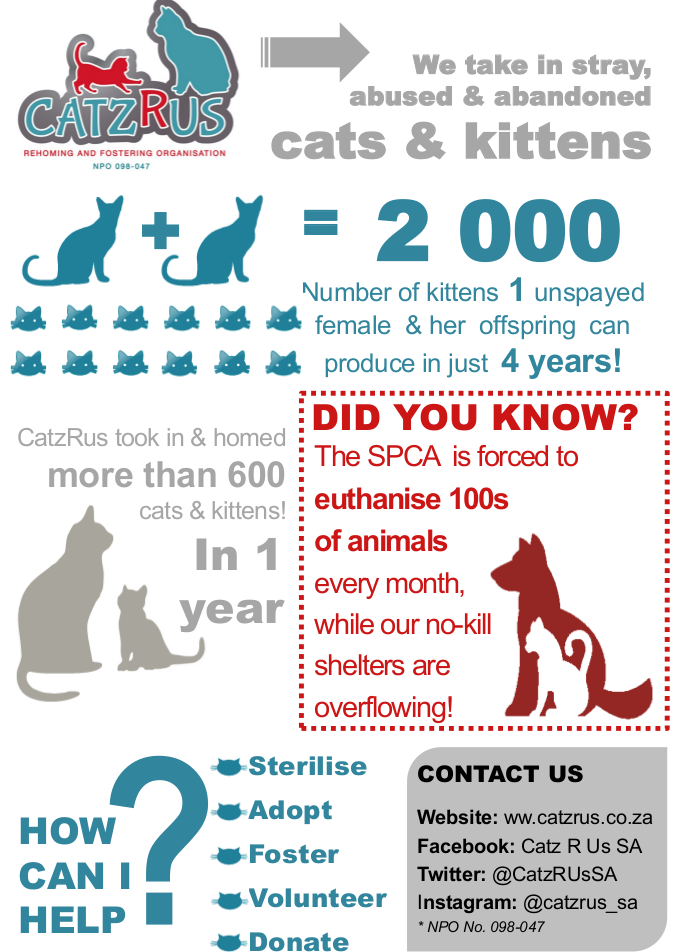 Be part of the solution - adopt your fur-Princess from a registered rescue organisation!