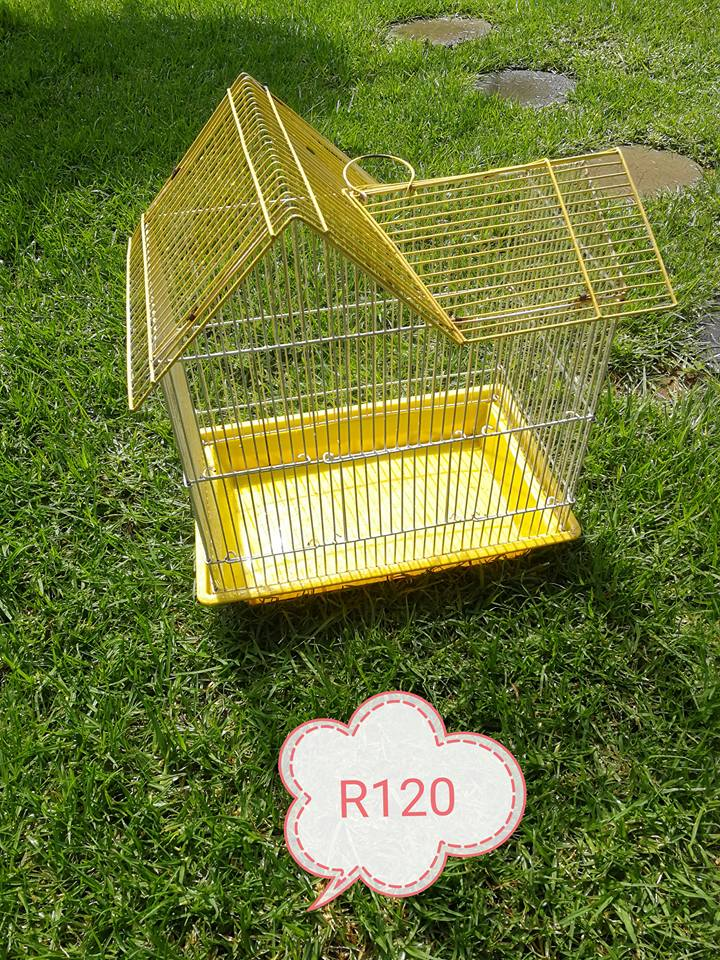 Yellow budgie cage