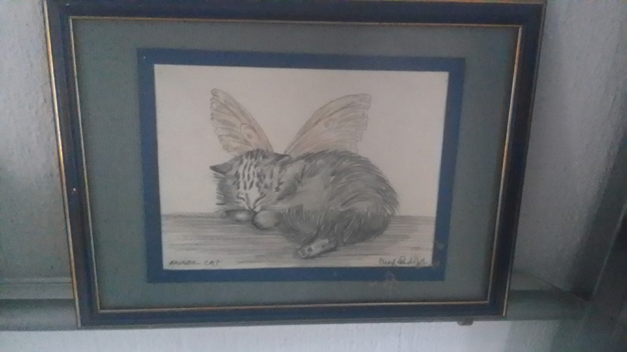 Pencil sketch of fairy cat, original artwork