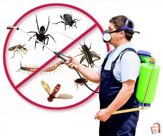 Your best pest control service providers!