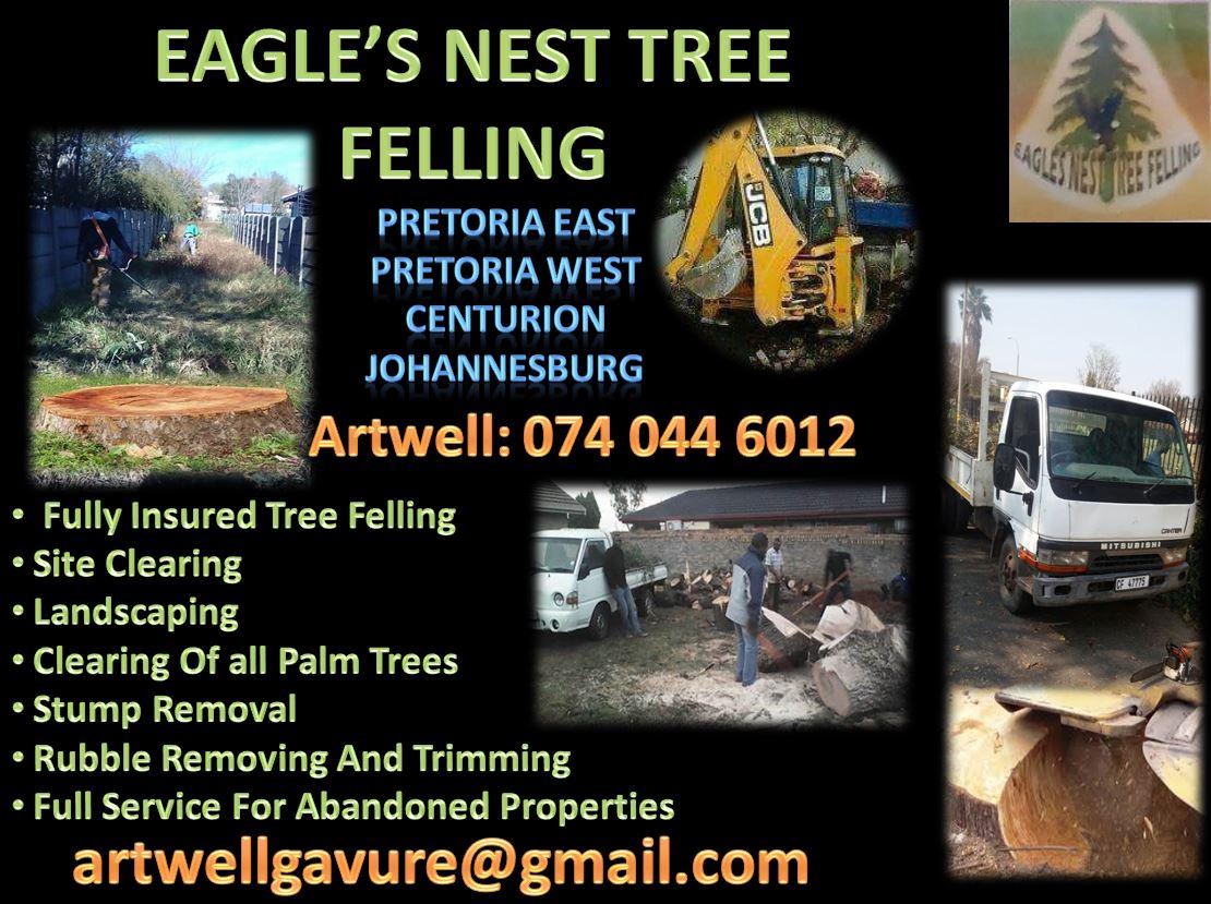 EAGLE'S NEST TREE FELLING