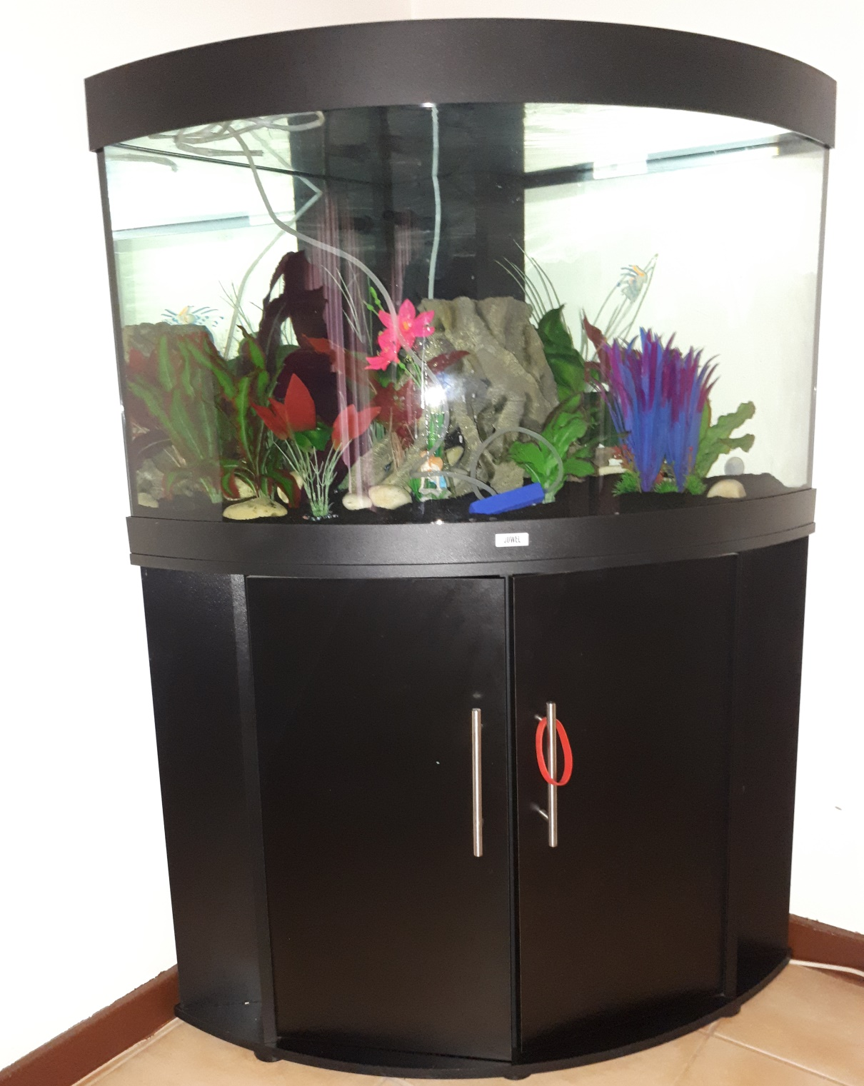 Jewel Trigon 190 Aquarium with Accessories