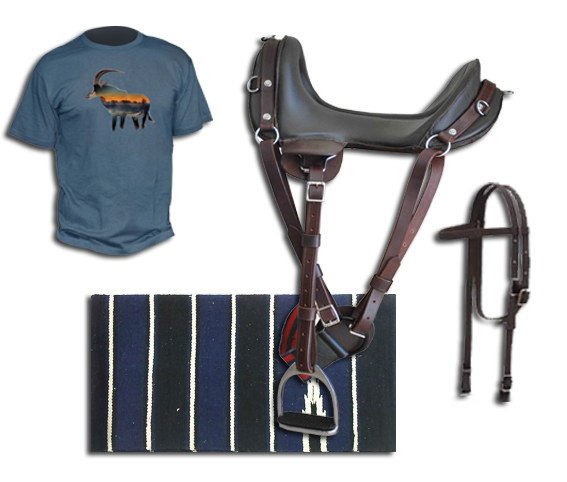 A complete inexpensive horse riding kit