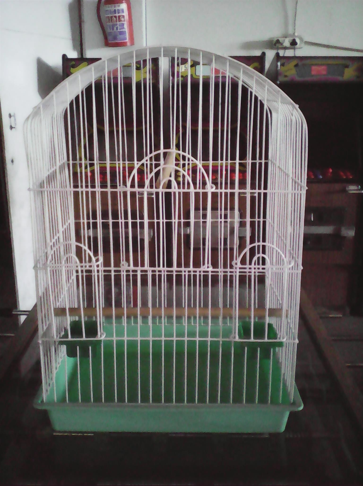 Parrot Cage And Other Cages