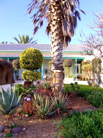 Business opportunity on West Coast:  Guest House & farm in the mids of South Africa's Flower Region