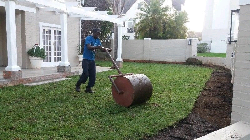 Instant Lawn For Sale With Free Delivery:0617591082